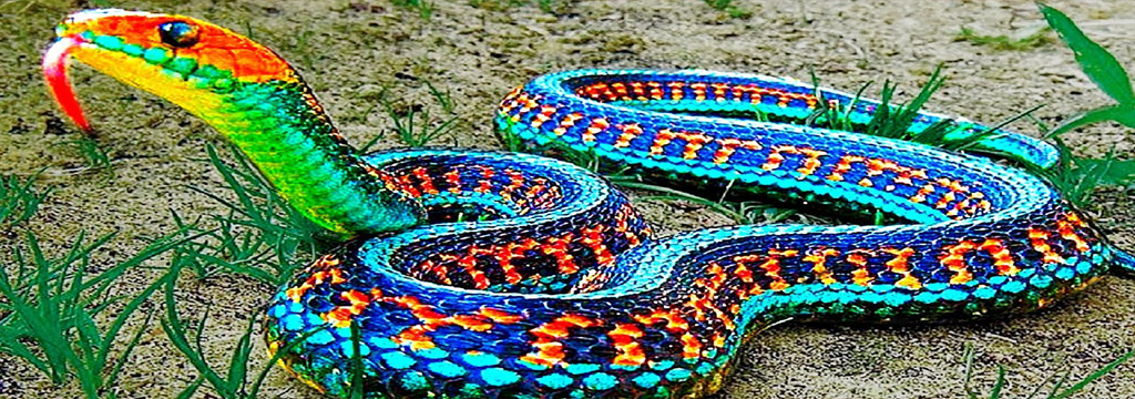 Have you ever dreamed of snakes?